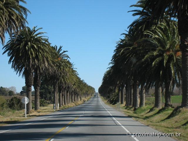 Estrada em Colônia del Sacramento - Uruguai