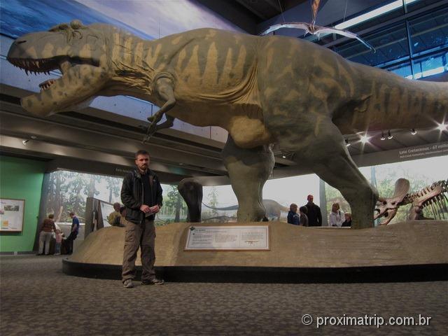 Tiranossauro Rex no museu de ciências de boston