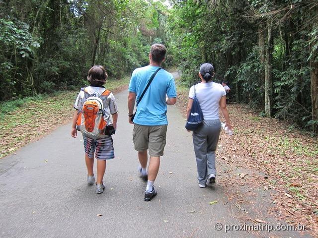 caminhada no Núcleo Pedra Grande - São Paulo
