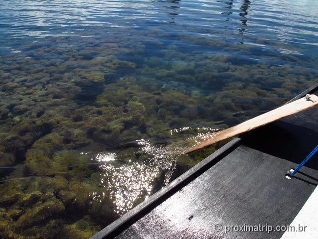 recifes de coral e águas cristalinas em porto de galinhas