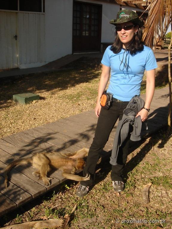 Fazenda Xaraés - Pantanal - a macaca bugio Xica pedindo um agrado!