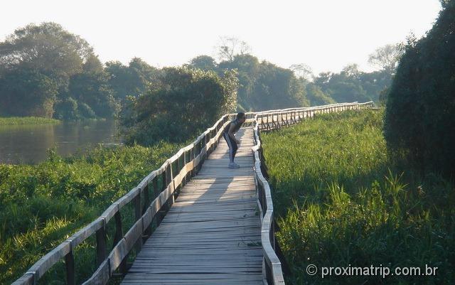 Passarelas no Passo do Lontra Parque Hotel - Pantanal
