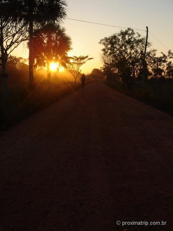 jogging no pantanal