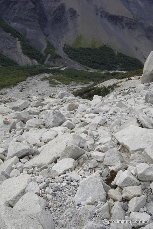 Torres del Paine - 184
