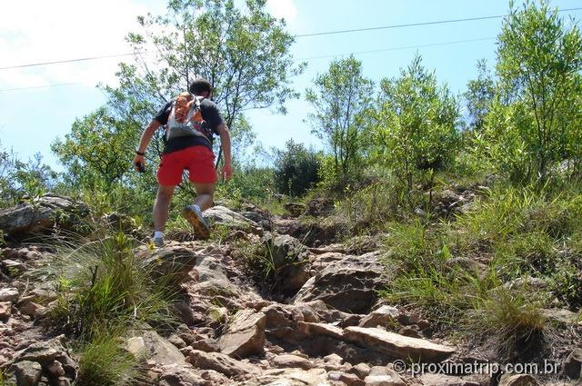 Trilha do pai zé - trecho final - Parque estadual do Jaraguá