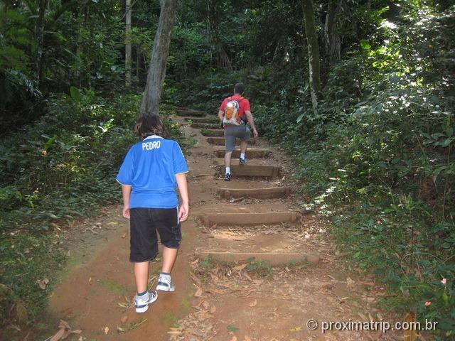 trilha do pai zé - acesso ao pico do Jaraguá