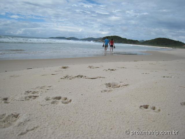 a praia tranquila de Quatro Ilhas - Bombinhas - SC