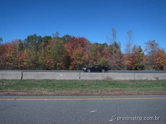 paisagem de outono – viagem de ônibus de Nova York a Boston pela Greyhound