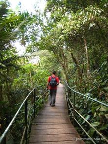 trilha suspensa - Parque Nacional da Serra dos Órgãos - sede Teresópolis