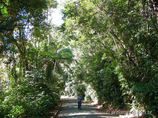 Estrada da barragem, no Parque Nacional da Serra dos Órgãos