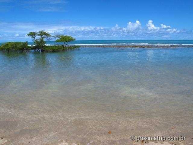 praia de Carneiros e arrecifes de coral - sem ondas, tranquila!