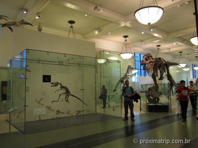 Tiranossauro REX e outros dinossauros no Museu de História Natural - Nova York
