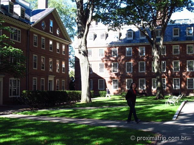 Harvard Yard - Boston