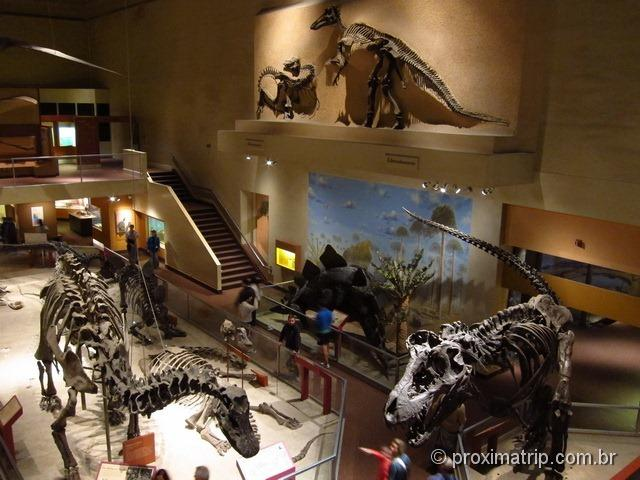 Museu História Natural Washington DC Smithsonian Seção Dinossauros