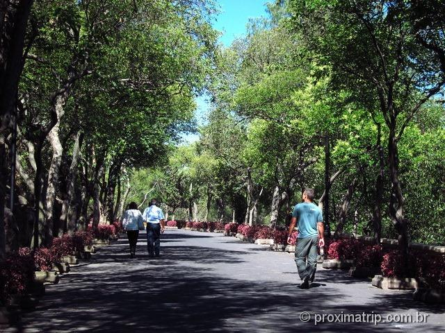 Agradável caminhada pelo Bosque de Chapultepec - Cidade do México