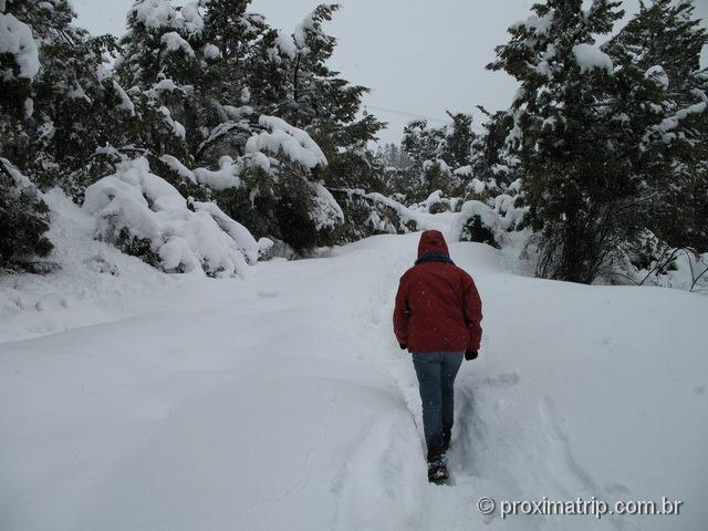 Subindo Cerro Otto a pé em dia de nevasca
