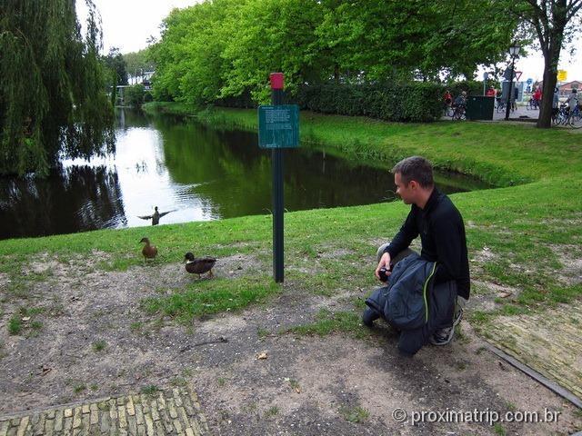 Paisagem rural em Amsterdam