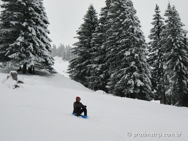 Brincando de Trenozinho na neve em Manigod - La Clusaz