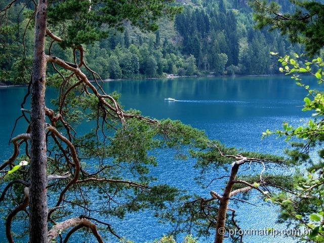 Lago Alpsee em detalhe