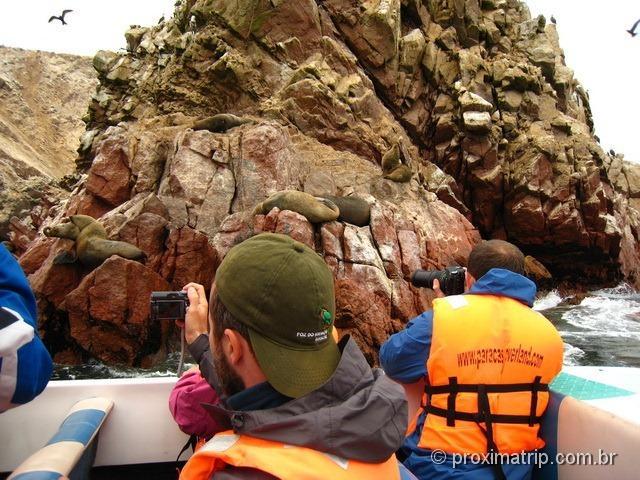 Tour de barco às Islas Ballestas