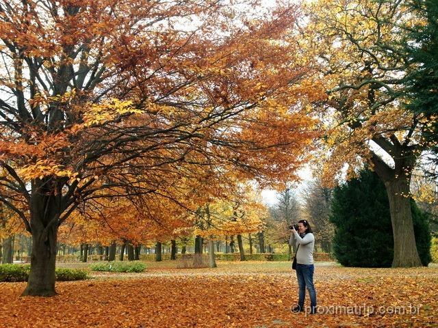fotos das folhagens de outono nos jardins do Schönbrunn