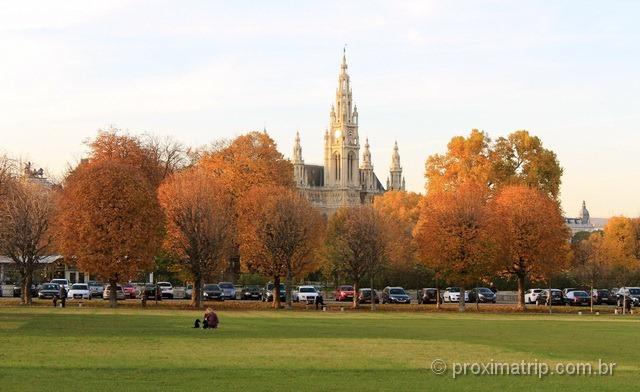 vegetação com as típicas cores de outono, perto da Rathaus (prefeitura) de Viena