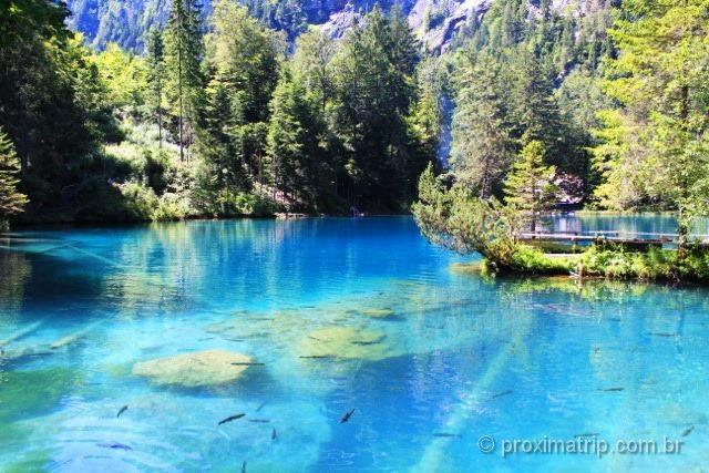 Água azul turquesa do lindo lago Blausee - Suíça