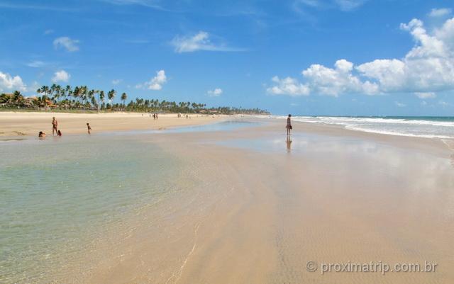 Bancos de areia durante a maré baixa na Praia do Cupê, em Porto de Galinhas