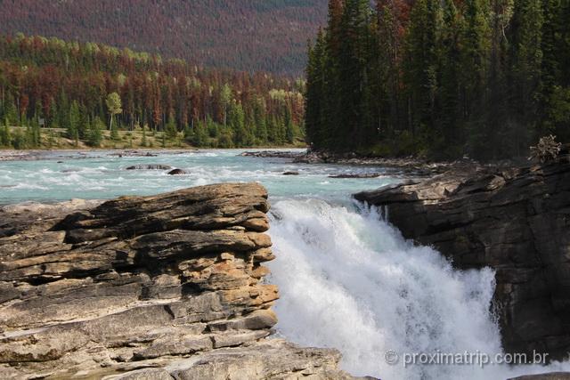 o que fazer em Jasper: Athabasca Falls