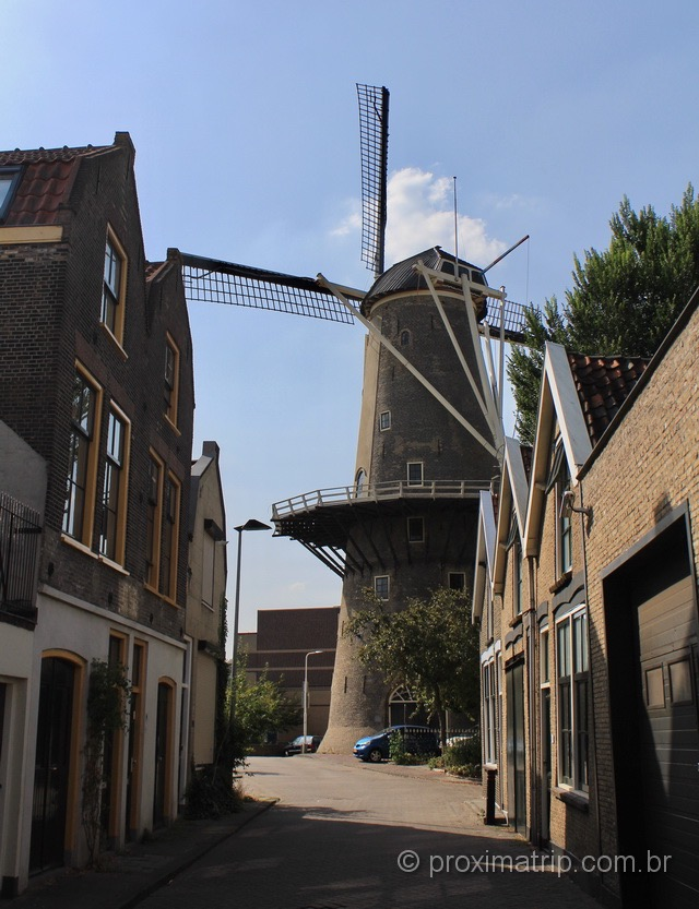 Moinhos em Gouda: um símbolo holandês para você conhecer na cidade