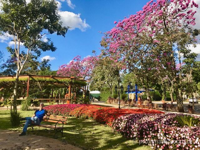 Admirar as lindas, diferentes e coloridas flores: o que você mais vai fazer em Holambra!