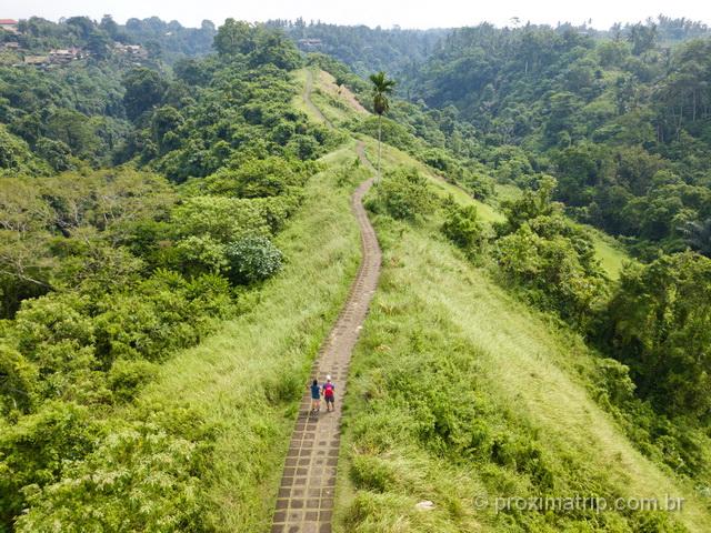 Trilha em Ubud: Campuhan Ridge Walk em foto com o drone!