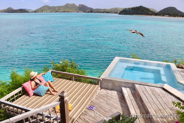 Eu e o pelicano dividindo a piscina!
