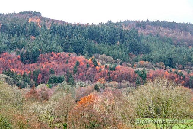 As lindas cores de outono no País de Gales